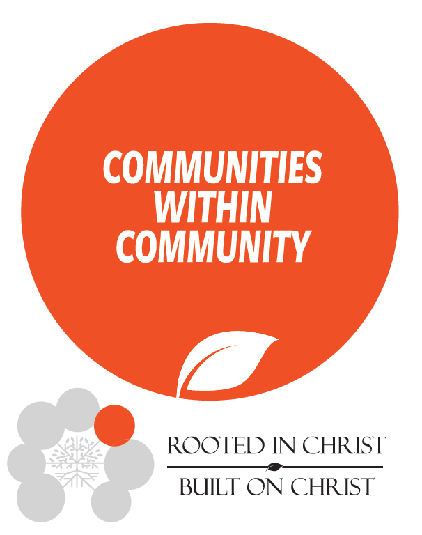 communities-within-community